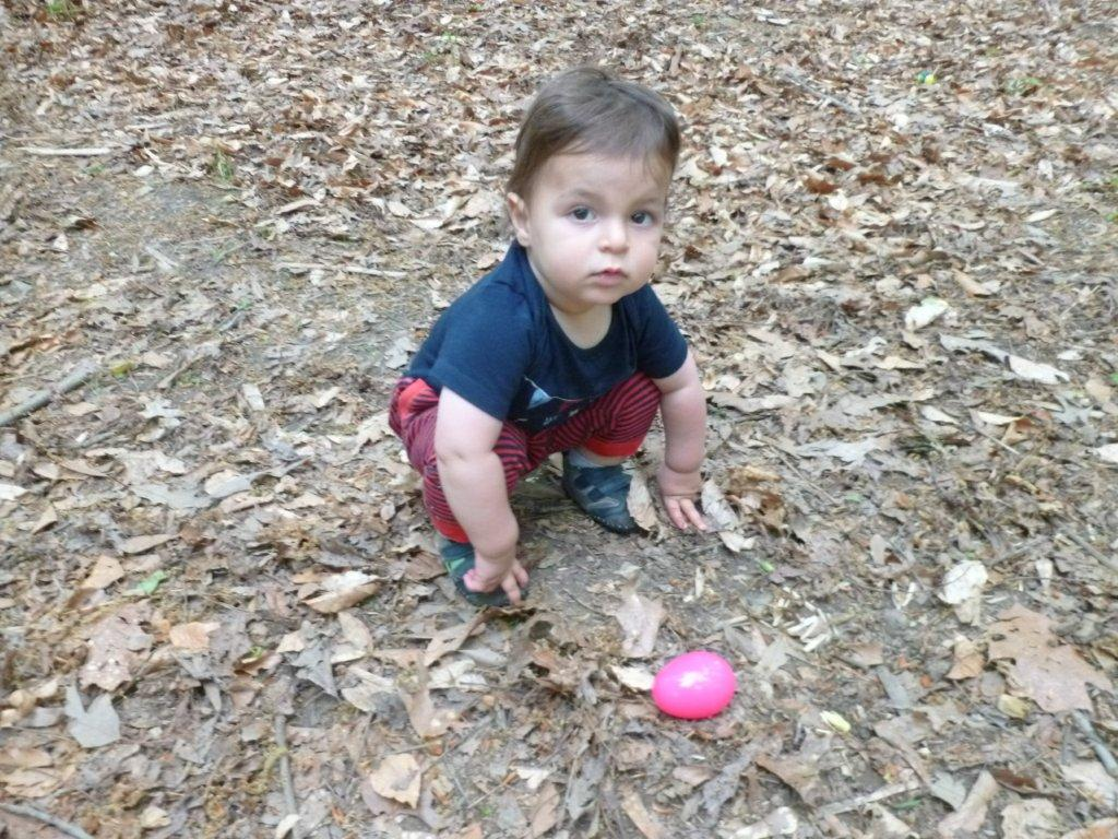 Rutledge Park Turtle Egg Hunt 2013